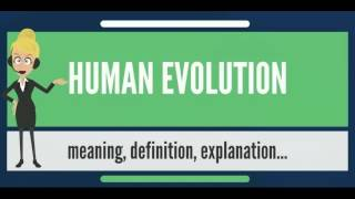 What is HUMAN EVOLUTION? What does HUMAN EVOLUTION mean? HUMAN EVOLUTION meaning
