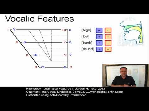 Phonology - Distinctive Features II