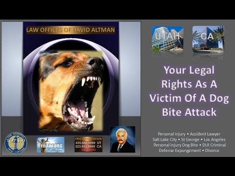 St. George Utah Dog Bite Personal Injury Attorney Salt Lake City Utah Accident Lawyer