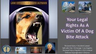 St. George Utah Dog Bite Personal Injury Attorney Salt Lake City Utah Accident Lawyer