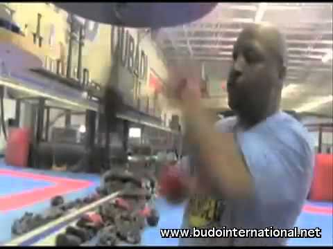Mastering Boxing by Ray Mercer