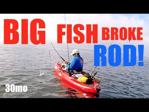 BIG FISH BROKE ROD ! Fishing Wahoo Stadium Pensacola Florida