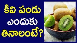 Benefits of KIWI Fruit | Amazing Health Tips in Telugu | కివి పండు ఎందుకు తినాలంటే | Janatha Tube
