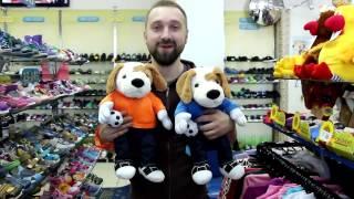 видео Обувь в Витебске