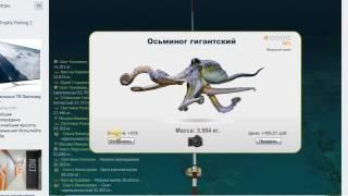 Ловлю ночью на ББР в трофейной рыбалке(очередное видео с симулятора