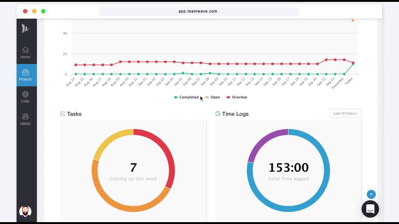 TeamWave: Project Management