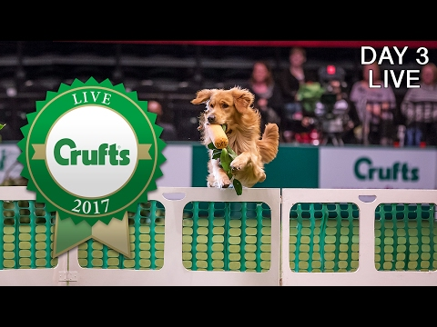 Day 3 Live | Crufts 2017