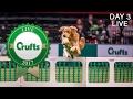 Day 3 Live | Crufts 2017