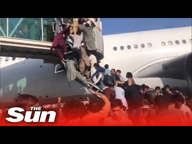 Desperate bid to flee Taliban - STAMPEDE at Kabul Airport kills 5 as thousands storm planes