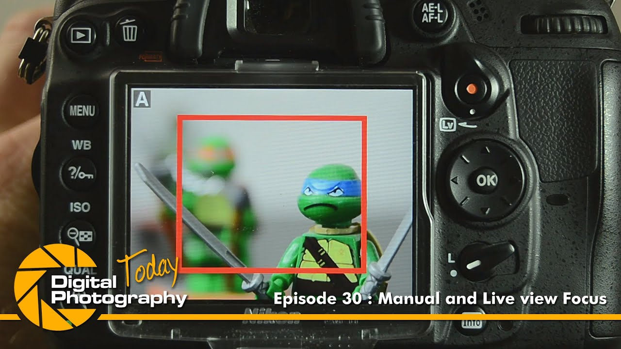 Episode 30 - Manual & Live view Focus [Digital Photography ...