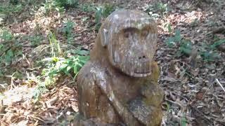 Kỳ thú vườn tượng gỗ Măng Đen/Nguyễn Quốc