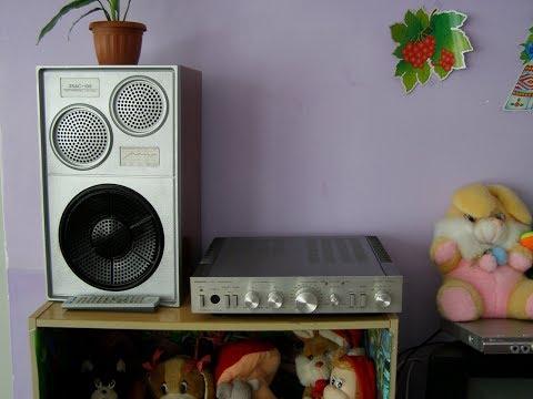 Подарок в детский сад (Ремонт и доработка акустики 25АС-109)