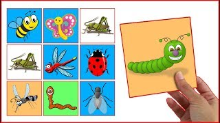 LEARN COLORS With  insect Animals Interactive Game Cards Toy PEXESO #09