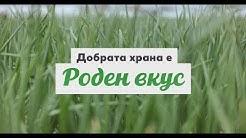 Kaufland | Добрата храна е качеството на българските зеленчуци