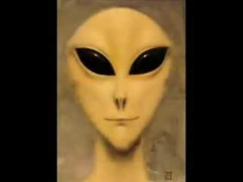 Close Encounters at Whitley Strieber's Cabin: 2 Witnesses Speak Out