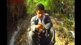 Korani Kurdi - Shaho