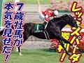 【関屋記念 結果 2013】レッドスパーダ