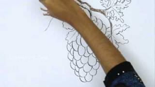 How to Draw a Grapes