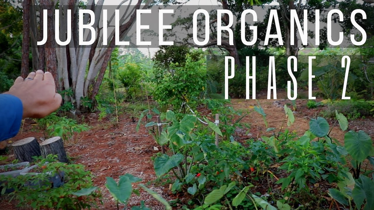 3-Acre Edible & Native Landscaping Project: Breaking Ground