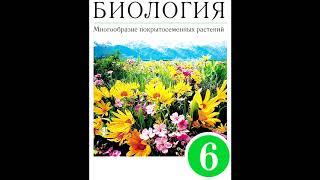 § 11 Цветок
