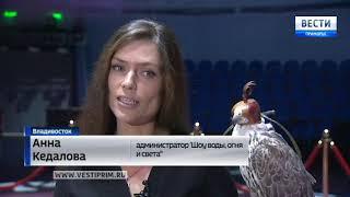 """Цирк Никулина с новым """"Шоу воды, огня и света"""" во Владивостоке"""