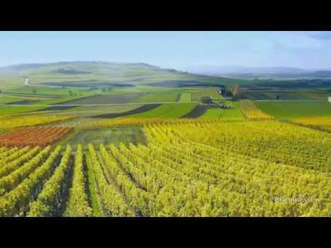 Travel Guide Rhineland, Germany - Romantic Germany: Wonderful Wine