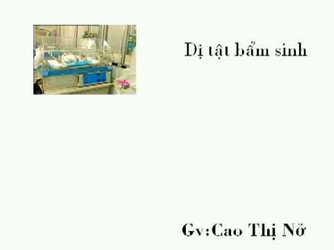 Thong tin trai dat nam 2000(Gv Cao Thi No)