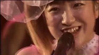 新谷良子 - ピンクのバンビ