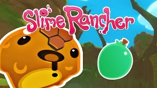 Top 10 Ranching Tips! Slime Rancher Tips and Tricks