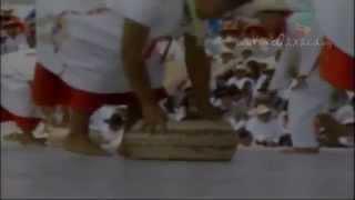 Guelaguetza 2014: Santiago Jocotepec, La Compañera del Chinanteco (28 de julio, 10am)