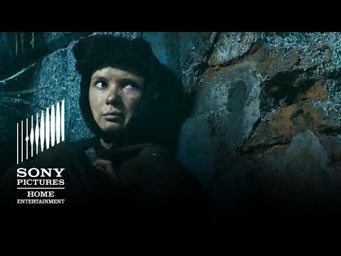 Stalingrad  In Cinemas Now!