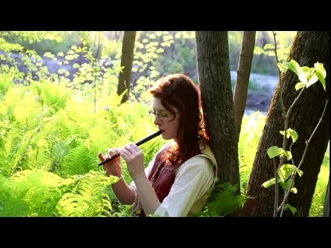 Concerning Hobbits - Tin Whistle Music Video - Elise W.