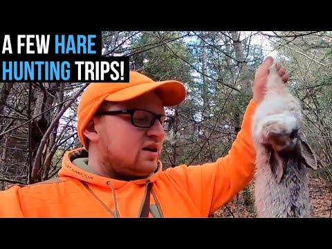 Snowshoe Hare Hunting | Last Few Trips Of The 2017/2018 Season