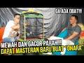 Masteran Murai Batu Mewah Milik Ko Ade Kini Sudah Ada Di Tangan Saya Om Bro  Mp3 - Mp4 Download
