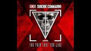 Suicide Commando - The Pain That You Like (C-Lekktor Remix)