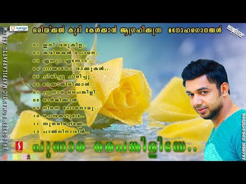 Punnara Painkiliye |Saleem Kodathoor|Rehna|Shafi  Latest Selected romantic mappilapattu album 2017