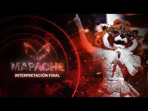 Mapache rumbea con Mario Bautista y Edwin Luna   Gran final de ¿Quién es la Máscara? 2020
