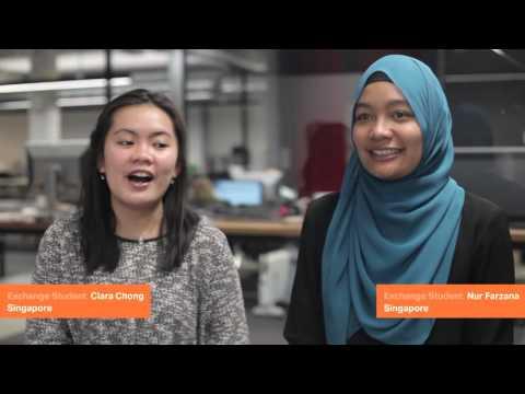 International at CoCA: Best Experience in New Zealand   Massey University
