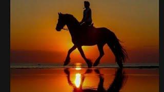♡/КЛИП/~Лошади~\Каналу Мария Horse\♡