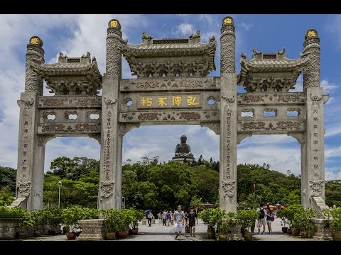 Ken Dog Twists Into China June 18, 2016