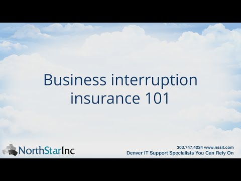 Business Interruption Insurance, Data Backup, and Disaster Recovery