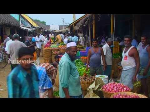 Rajapalayam Market  Tamilnadu
