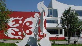 NIOTAN: международный центр бизнеса, менеджмента и психологии