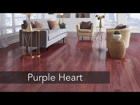 Purple Heart You