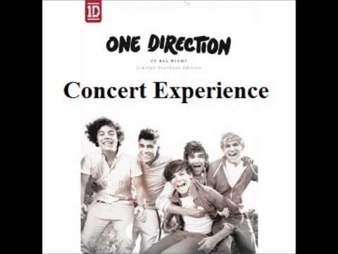 One Direction- I Wish (Concert Experience)