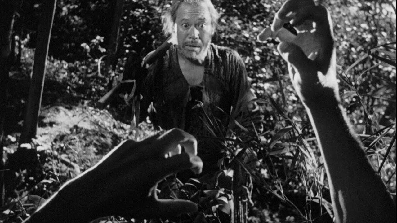 rashomon criterion essay related posts to rashomon criterion essay