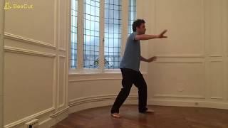 Zhan Zhuang   Jan Wu  La danse de l'énergie interne Going wild