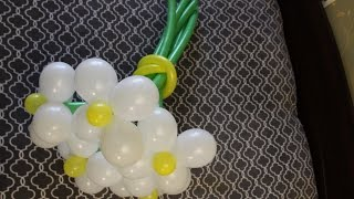 Фигуры из воздушных шаров. Как сделать ромашку из воздушных шаров?