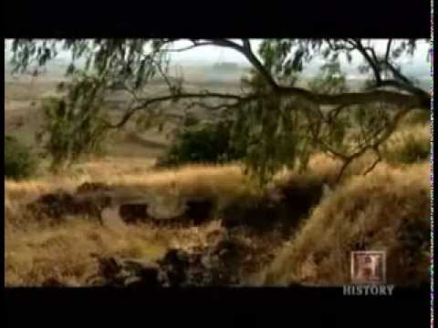 Arab-Israeli War 1967 part 5_6