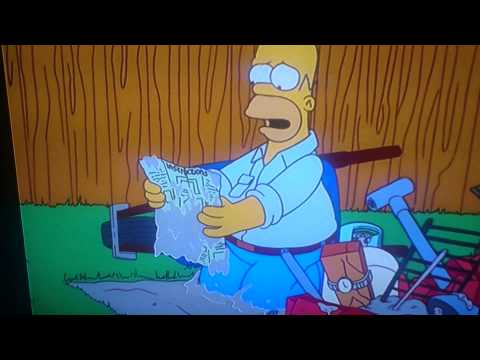 The Simpsons Homer And The Bbq